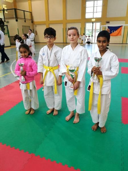 karate-2017-4
