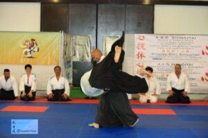 Aikido-valsassina